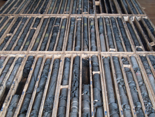 core, rotary coring, core samples
